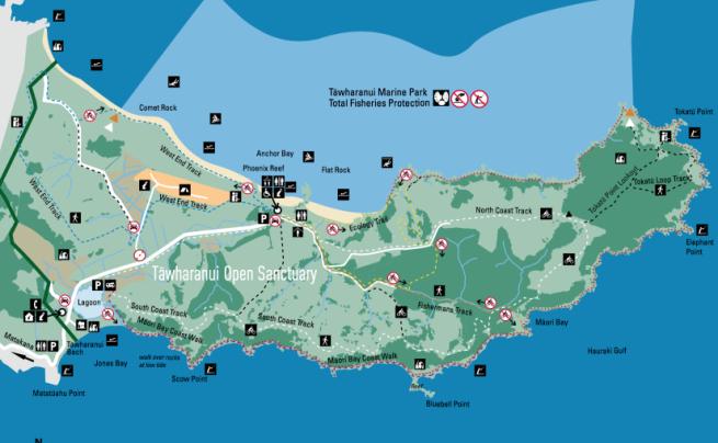 Tawharanui map